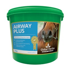 Global Herbs Airway Plus Powder 1kg