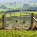 Galvanised Gates