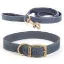 Dog Leads & Accessories