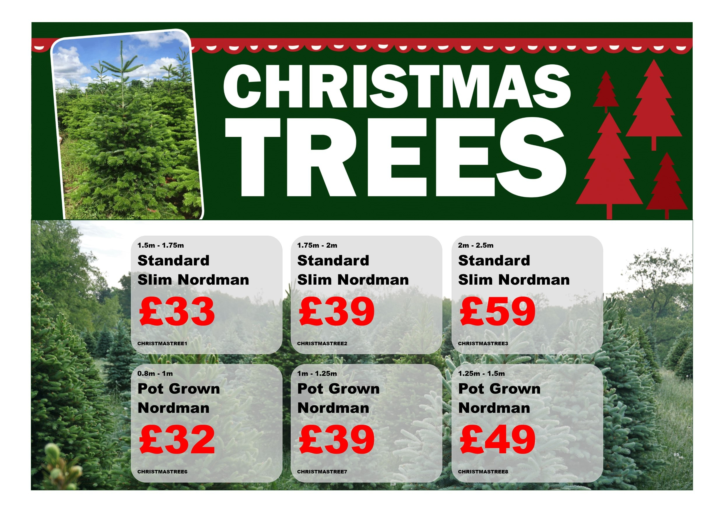 Christmas Tree Price List Torne Valley 2019