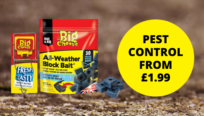 Pest Control from £1.99
